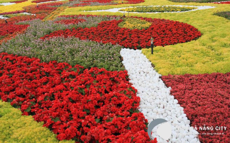 Chìm đắm trong không gian ngàn sắc tại vườn hoa Le Jardin D'Amour